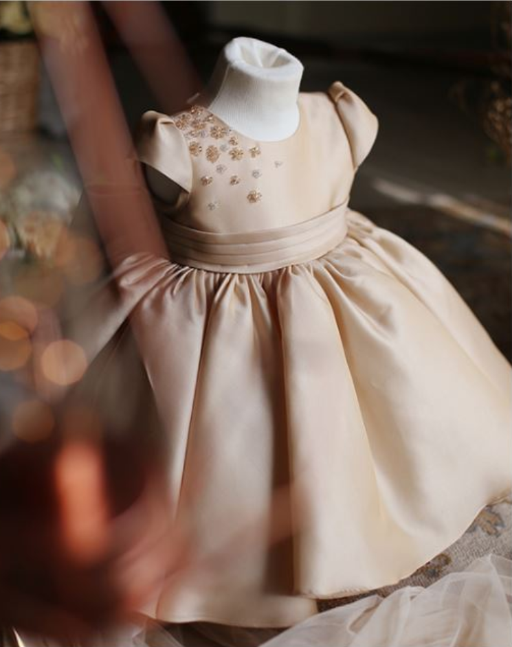 Flower Girl Dress, New Flower Girl Dress, Light Brown Flower Girl Dress, Baby Girl Birthday Dress, Junior Bridesmaid Dress, High Quality Flower Girl Dress, Free Shipping Party Dress
